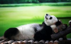 relaxation comment gérer le stress