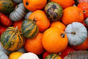 Citrouille, Halloween. 5 choses à savoir pour épater vos amies le soir d'Halloween !