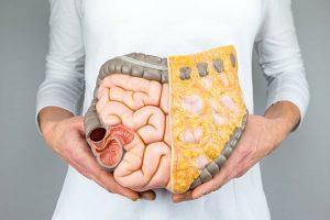 Qu'est-ce que le microbiote intestinal ?Qu'est-ce que le microbiome humain ?