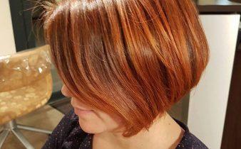 La coloration végétale en 5 leçons. EPISODE 2. La physiologie du cheveu.