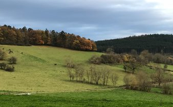 Une nouvelle destination dans les Ardennes chez Un Lit au Pré !