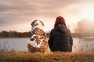 6 raisons scientifiques d'avoir un chien immédiatement.