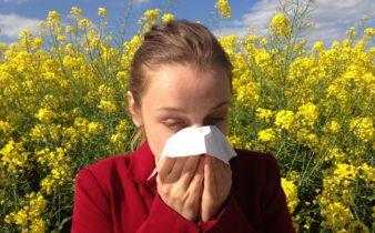 Allergie au pollen : comment lutter?