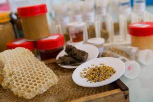L'Université de Corse, une « ruche » scientifique pour le miel de Corse.