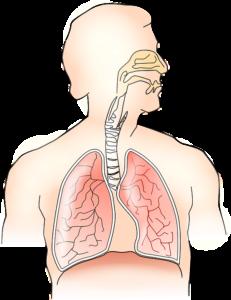 Le Hoquet : causes, remèdes et traitements.