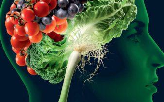 9 aliments qui peuvent aider à sauver votre cerveau.