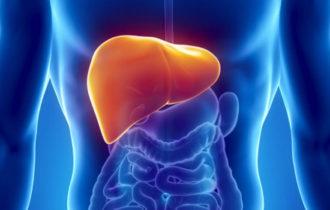 Hépatite C et maladies du foie : dépistage éclair grâce à deux nouveaux appareillages portatifs.
