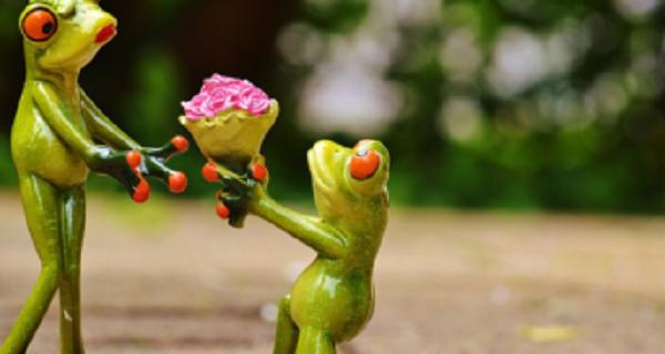 Les jeunes et la Saint Valentin