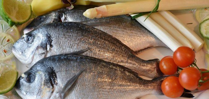 11 bienfaits de la consommation de poisson sur la santé