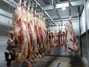 La viande : Une cause majeure de maladie.