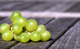 Les bienfaits du pépin de raisin