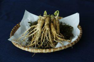 Les plantes de la pharmacopée chinoise