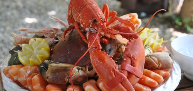 Quels sont les avantages de manger des fruits de mer durables