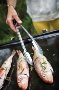La plancha : un mode de cuisson sain et savoureux !