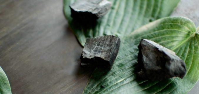 Charbon binchotan : du nouveau pour votre santé