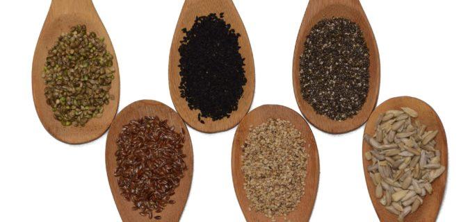 Graines de Lin vs Chia - Quelles sont les plus nutritives ?