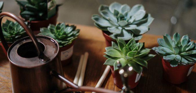 Possibilité de reconfinement: quels sont les activités «bien-être» à faire à la maison?