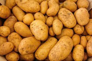 Comment acheter, conserver et préparer des pommes de terre