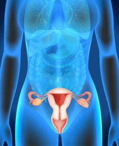 Syndrome des ovaires polykystiques : symptômes et traitements.
