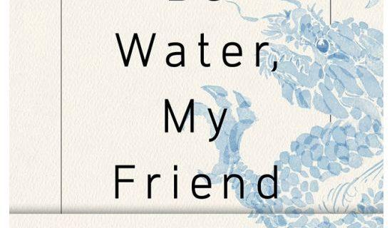 Be Water My Friend - Shannon LEE