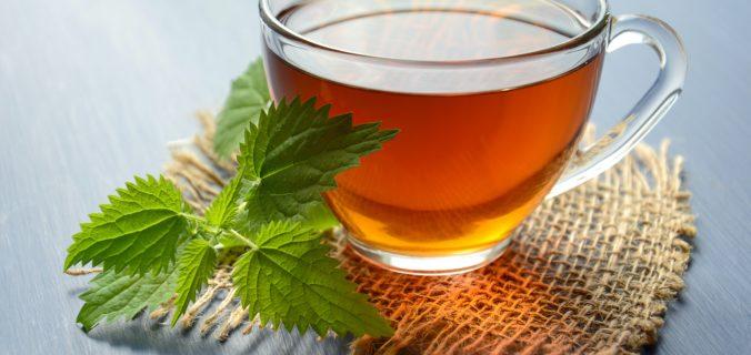 Les thés détox de Nioo: ce qu'il faut savoir